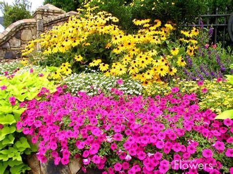 10 small flower garden ideas build serene backyard
