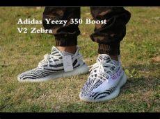 yeezy boost 350 v2 zebra on foot adidas yeezy 350 boost v2 zebra on