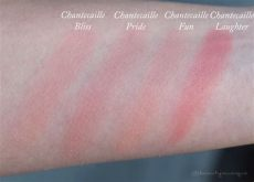 chantecaille pride cheek shade is unique - Chantecaille Philanthropy Cheek Shade Swatches