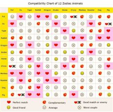 dragon zodiac sign compatibility 2018 horoscopes year of the and zodiac compatibility