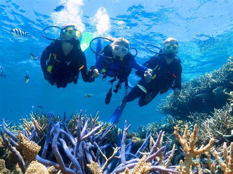 diving great barrier reef scuba dive cairns port