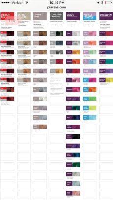 pravana chromasilk color chart pdf pravana vivids color chart pravana hair color pravana color chart hair color chart