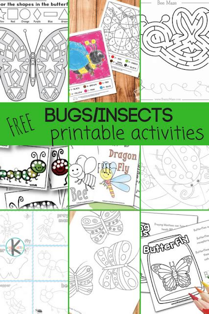 28 free insect worksheets