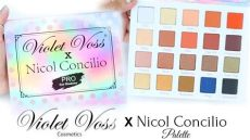 violet voss x nicol concilio palette swatches - Violet Voss Nicol Concilio Palette Swatches