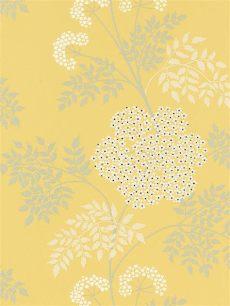 sanderson cow parsley wallpaper dopwco105 yellow at lewis partners - Sanderson Cow Parsley Wallpaper Dopwco105 Chinese Yellow