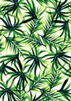 tropical leaf wallpaper australia tropical leaf wallpaper wallpapersafari
