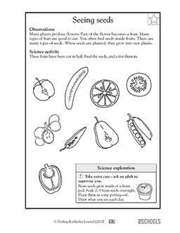 free printable science worksheets word lists activities greatschools