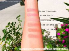 chantecaille philanthropy cheek shade swatches cheeks that charm with chantecaille philanthropy blushes review and swatches cat s daily living