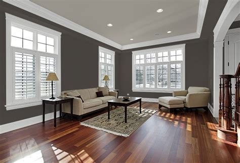 gray green paint color living room