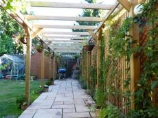 climbing plants for pergolas uk jacksons timber pergola has given the garden an dimension bedecked with climbing plants