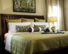 18 best images about decorating ideas on - Green And Brown Bedroom Decorating Ideas