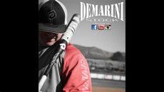 demarini cartel 2 demarini 2013 cartel 2 usssa slowpitch softball bat review
