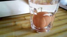 como saber si un capacitor esta malo c 243 mo saber si un huevo est 225 bueno o malo romperlo