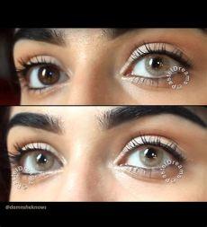 freshtone naturals hazelnut pastel dreams - Freshtone Lenses Hazelnut