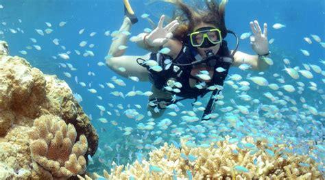 luxury great barrier reef liveaboard reef trip