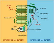 el funcionamiento de la heladera principios f 237 sicos de la transferencia calor - Funcionamiento De Una Heladera