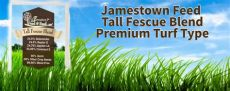best brand grass seed for nj grass seed jamestown feed and seed