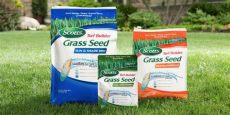 crops and seed september 2019 - Best Brand Grass Seed For Nj
