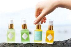 leahlani skincare chagne serum leahlani elixirs and serums skin care serum organic skin care