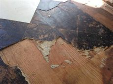 asbestos in flooring asbestos floor tile mastic removal