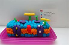 cell membrane model project ideas students