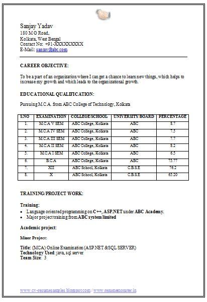 10000 cv resume sles free download mca fresher