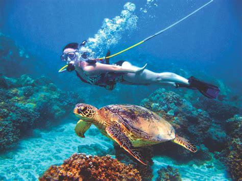 roatan snuba diving excursion discover roatan excursions tours