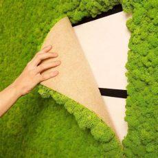 wandgarten kreieren eine dekorative mooswand selber machen - Wandgarten Innen Kaufen