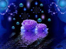glitter rose wallpapers free download purple roses wallpapers backgrounds free purple roses brian
