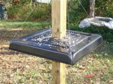 i was a horrible problem with squirrels scering up my 4x4 post and feasting on the - Homemade Squirrel Baffle For 4x4 Post