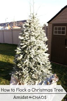 give your tree a flocking this christmas vancouver decorating your tree day 1 how to flock your tree