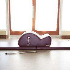 pilates bc health and wellness - Apple Pilates Victoria Bc