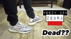 yeezy zebra on feet women yeezy 350 zebra on