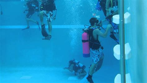 scuba diving classes offered florida dive shop englewood