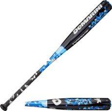 hottest fastpitch softball bats fastpitch softball bat on the market david simchi levi