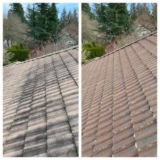 will roundup kill moss on my roof roof cleaning portland or expert power wash