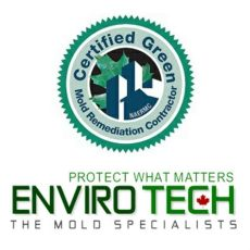envirotech mold remediation trailview drive peterborough on 2020 - Envirotech Mold Removal