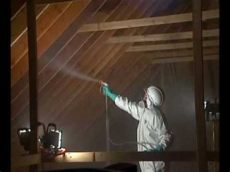 envirotech mold removal mold remediation envirotech call 1 800 724 2102 or www naturallythebest