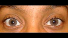 solotica ocre on dark eyes solotica hidrocor ocre lens on