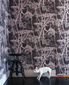 cole and son cow parsley wallpaper cow parsley wallpaper by cole