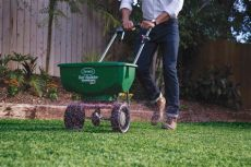 best grass seed topper 2019 best grass seeds reviews top grass seeds