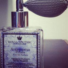 royal apothic perfume uk royal apothic arrives at anthropologie poppy lifestyle