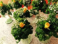 petersilienhochzeit brauche geschenke petersilienhochzeit petersilie hochzeitstag und gartenparty