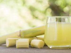 abnehmen mit zuckerrohrsaft - Zuckerrohrsaft Gesund