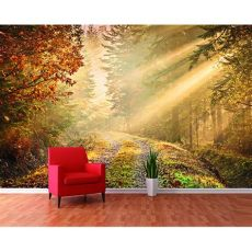 1 wall forest path sun beam wallpaper mural w8p forest 001 - Forest Wallpaper Murals For Walls