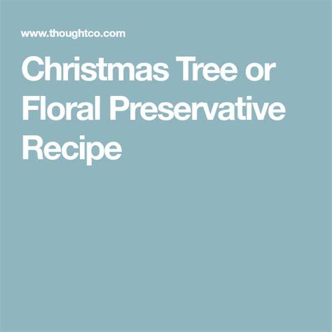 tree fresh winter homemade preservative christmas tree