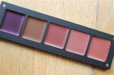inglot lip palette inglot lip palette and amc lipgloss in 541 lip palette lip gloss