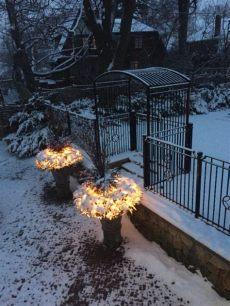 el split gotea hacia adentro el jard 237 n de invierno de adentro hacia afuera paisaje