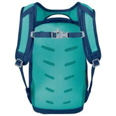 osprey daylite evergreen osprey daylite 10l blue buy and offers on trekkinn