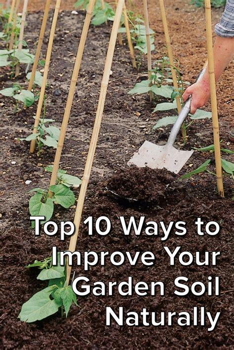 5 ways improve garden soil naturally compost pile